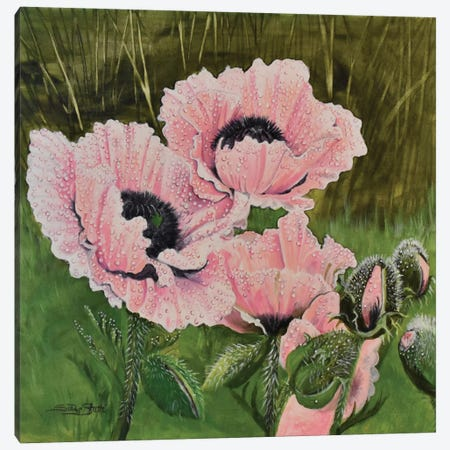 Poppies And Precipitation Canvas Print #SZS34} by SueZan Stutts Art Print