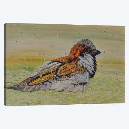 Sparrow Enjoying A Spring Rain Canvas Print #SZS39} by SueZan Stutts Canvas Artwork