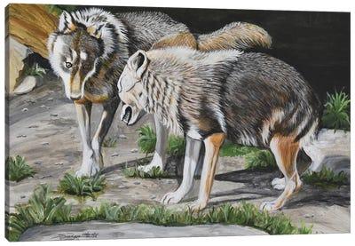 The Alpha Male Canvas Art Print