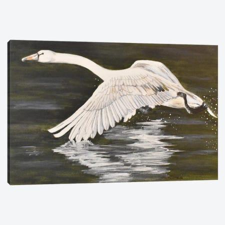 Wingtip Dip Canvas Print #SZS56} by SueZan Stutts Canvas Print