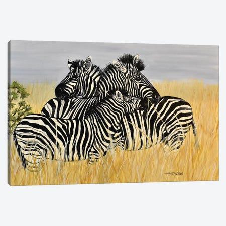 Zebra Family Canvas Print #SZS57} by SueZan Stutts Canvas Print