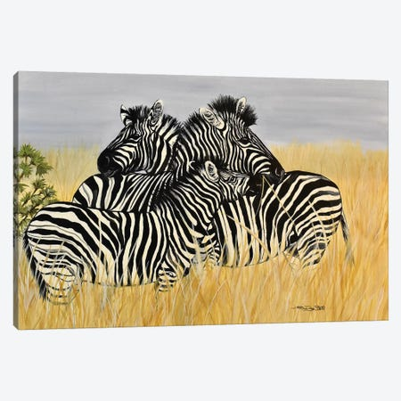 Zebra Family Canvas Print #SZS57} by SueZan Stutts Canvas Print
