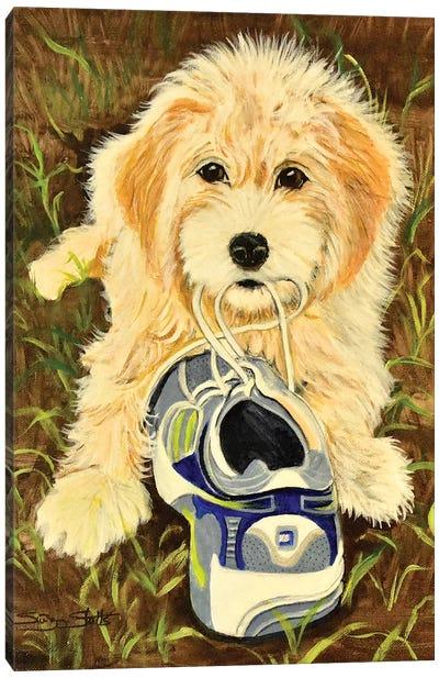 What Shoe Canvas Art Print