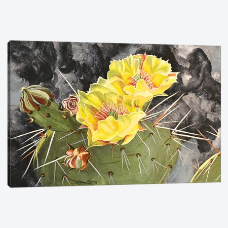 Cactus Bloom Canvas Print #SZS62} by SueZan Stutts Canvas Art Print