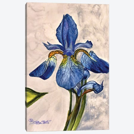 Blue And Gold Iris Canvas Print #SZS73} by SueZan Stutts Canvas Artwork
