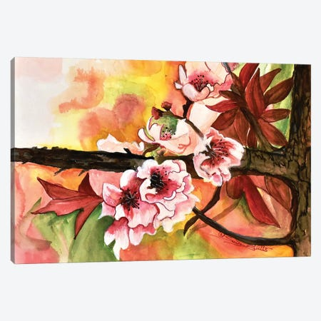 Cherry Blossoms Canvas Print #SZS74} by SueZan Stutts Art Print