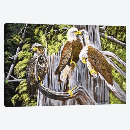 Three Eagles Canvas Print #SZS82} by SueZan Stutts Canvas Print