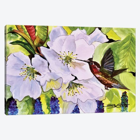 Blossoms With Hummer Canvas Print #SZS83} by SueZan Stutts Art Print