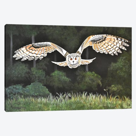 Night Flight Canvas Print #SZS87} by SueZan Stutts Canvas Wall Art