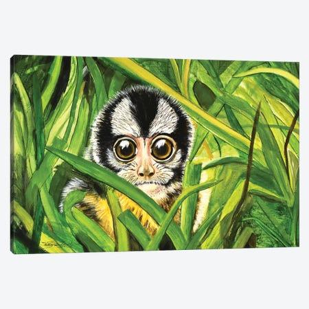 Owl Monkey Canvas Print #SZS89} by SueZan Stutts Canvas Print