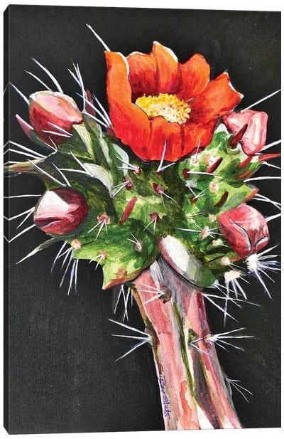 Chola Cactus Bloom Canvas Art Print