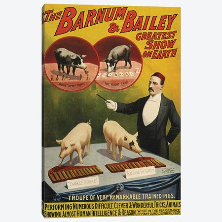 1900s Barnum & Bailey Circus Poster Canvas Print #TAA214} by The Advertising Archives Canvas Print