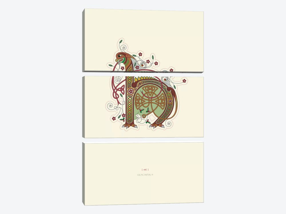 H Celtic Initial by Thoth Adan 3-piece Canvas Wall Art