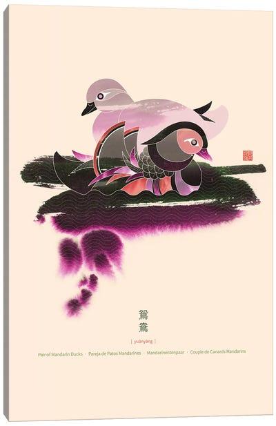 Pair Of Mandarin Ducks Canvas Art Print