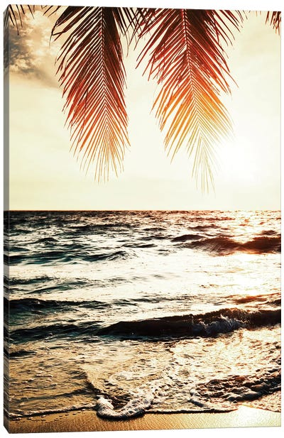 Night Beach Canvas Art Print