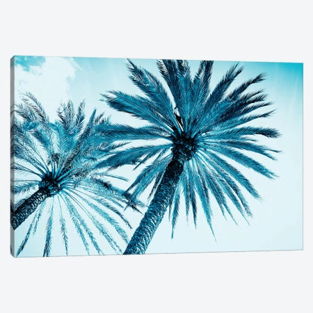 Chic Palms Canvas Print #TAI1} by Tai Prints Art Print