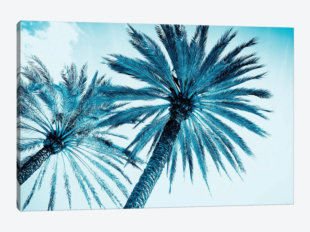 Chic Palms by Tai Prints 1-piece Canvas Art