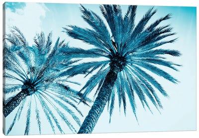 Chic Palms Canvas Art Print