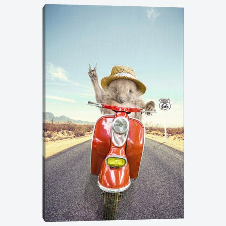 Hedgehog Traveler Canvas Print #TAI7} by Tai Prints Canvas Artwork