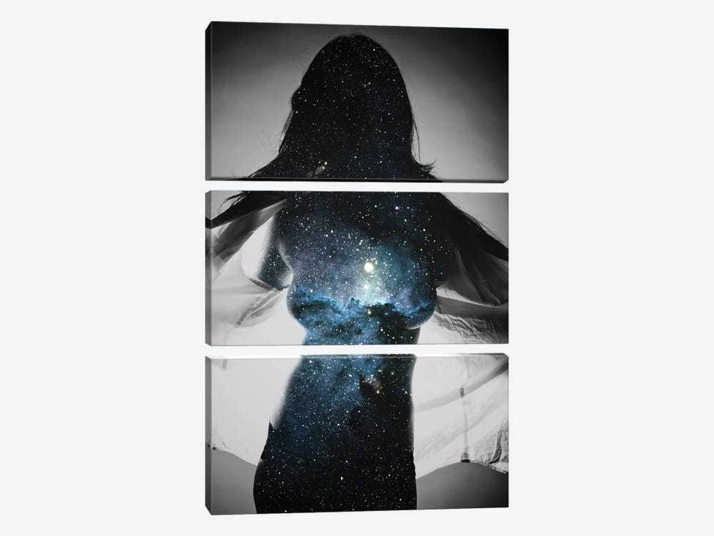 Astronomy II by Taylor Allen 3-piece Canvas Artwork
