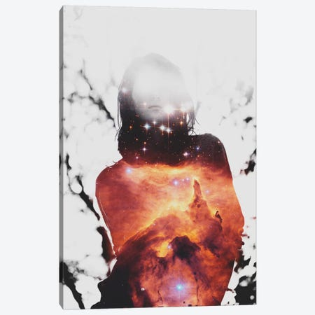 Astronomy IV Canvas Print #TAL13} by Taylor Allen Canvas Art Print