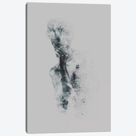 Ashes Canvas Print #TAL2} by Taylor Allen Canvas Wall Art