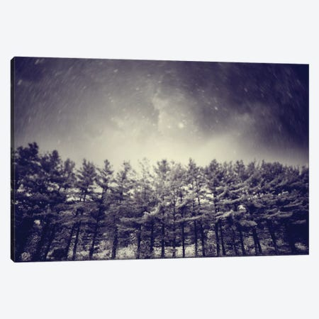Astronautography I Canvas Print #TAL3} by Taylor Allen Canvas Wall Art