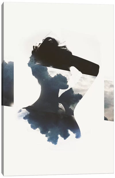 Silhouette IX Canvas Art Print