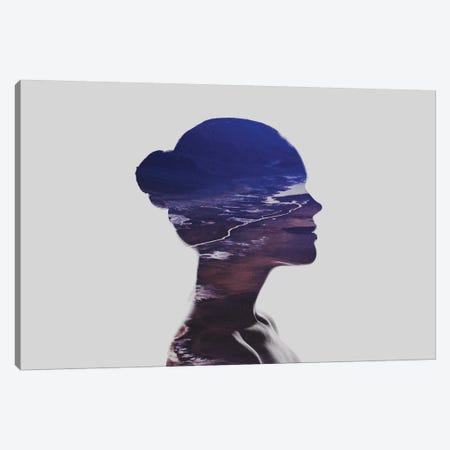 Silhouette V Canvas Print #TAL43} by Taylor Allen Canvas Art