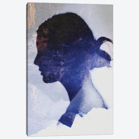 Silhouette VII Canvas Print #TAL45} by Taylor Allen Canvas Art Print