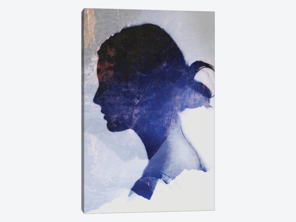 Silhouette VII by Taylor Allen 1-piece Canvas Art Print