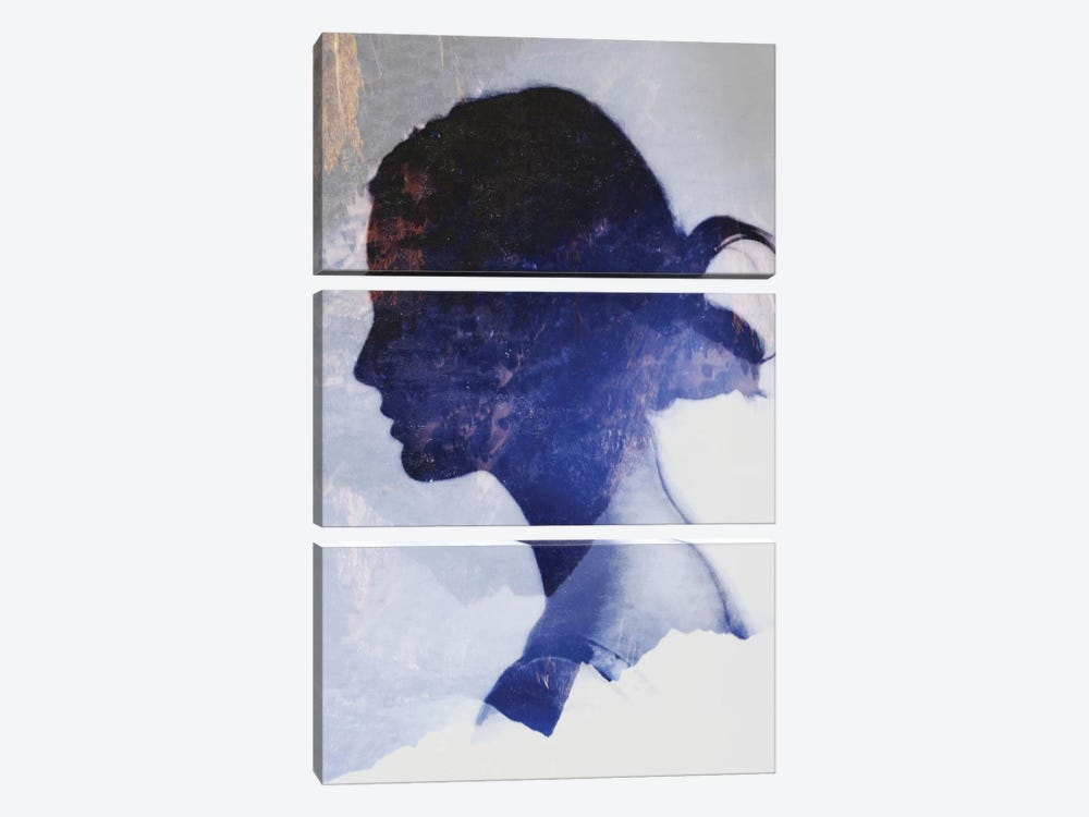 Silhouette VII by Taylor Allen 3-piece Art Print