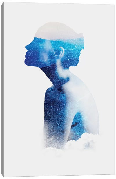 Silhouette X Canvas Art Print