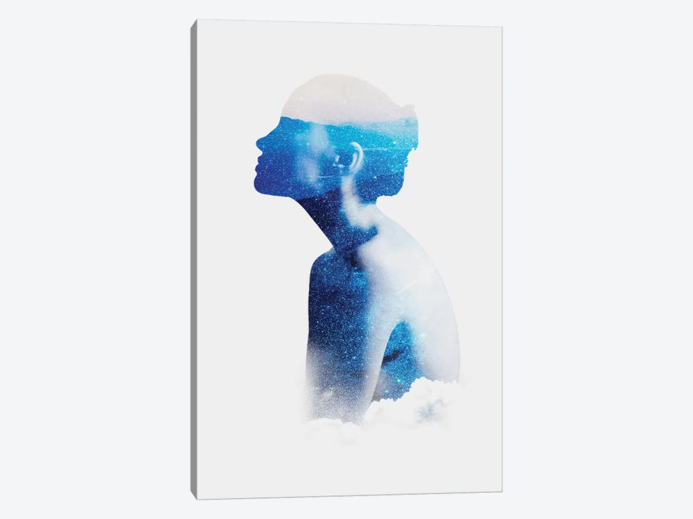 Silhouette X by Taylor Allen 1-piece Canvas Print
