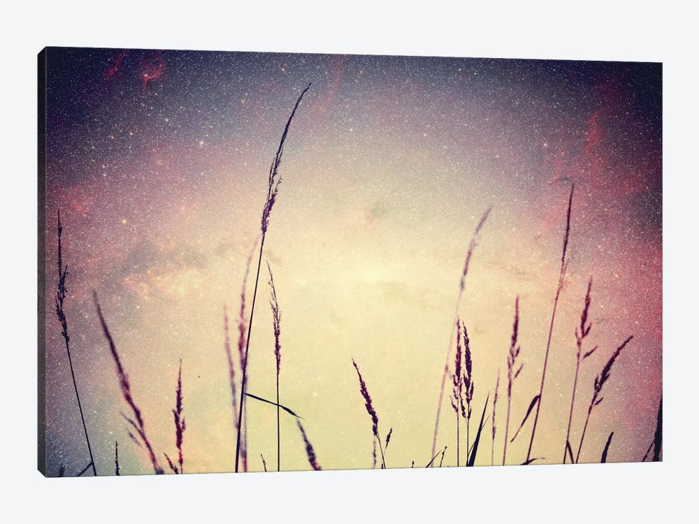 Astronautography VI by Taylor Allen 1-piece Canvas Wall Art