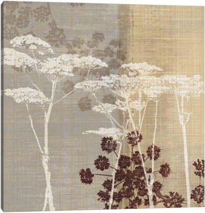 Lace I Canvas Art Print