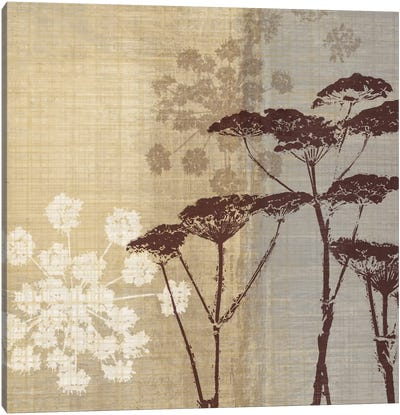 Lace II Canvas Print #TAN112
