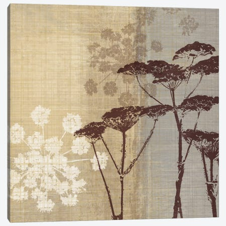 Lace II Canvas Print #TAN112} by Tandi Venter Art Print