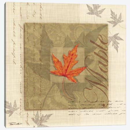 Maple Canvas Print #TAN122} by Tandi Venter Canvas Art