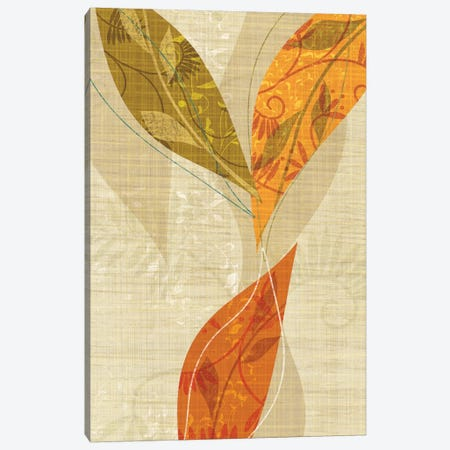 Natural Harmony II Canvas Print #TAN128} by Tandi Venter Canvas Wall Art