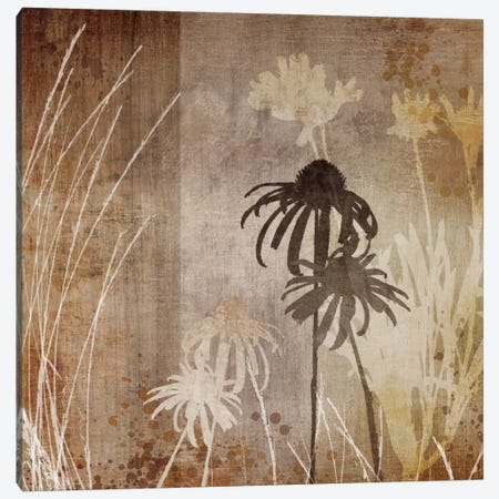Algarve Silhouettes I Canvas Print #TAN12} by Tandi Venter Canvas Art Print