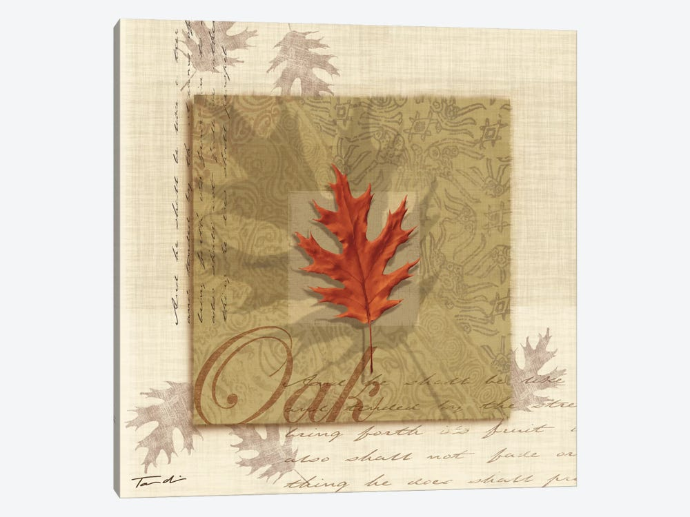 Oak by Tandi Venter 1-piece Art Print
