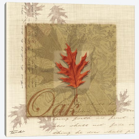 Oak Canvas Print #TAN131} by Tandi Venter Canvas Print