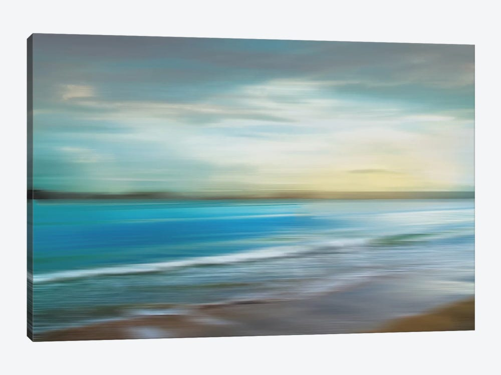 Ocean Plains by Tandi Venter 1-piece Canvas Artwork