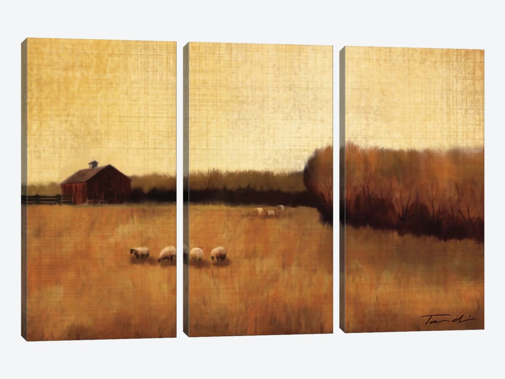 Open Range I by Tandi Venter 3-piece Canvas Print