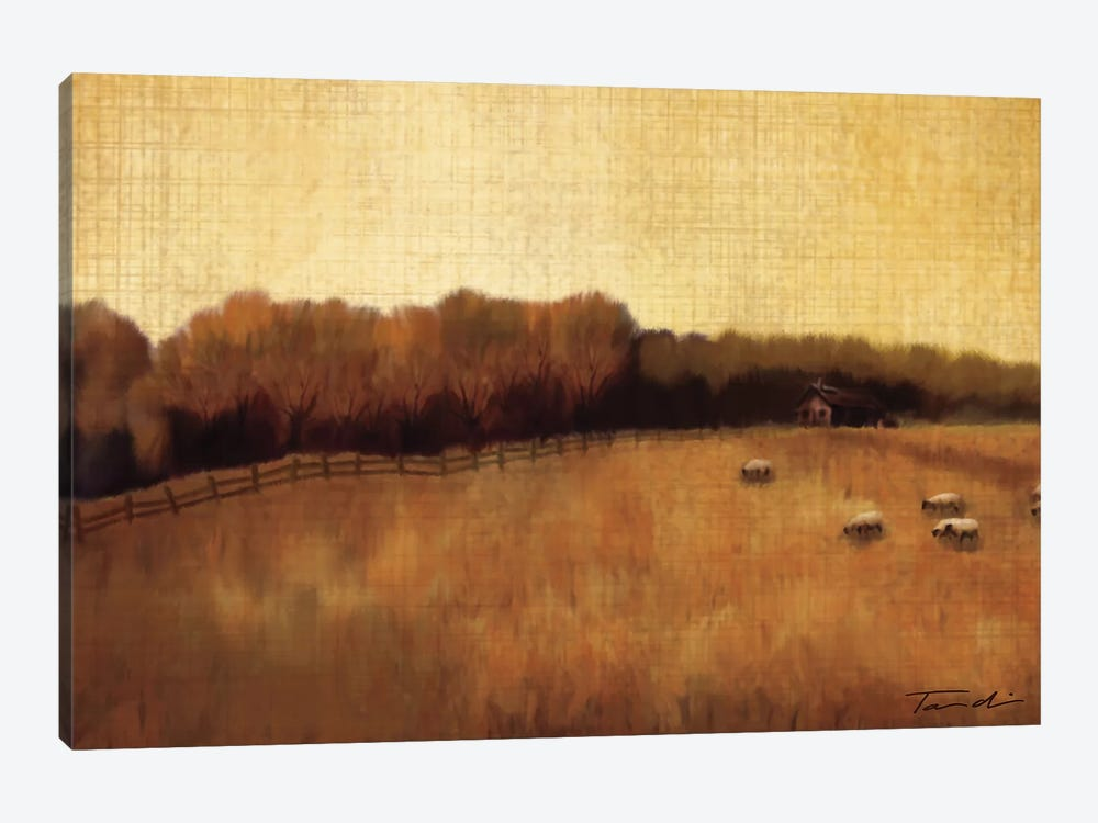 Open Range II 1-piece Canvas Art