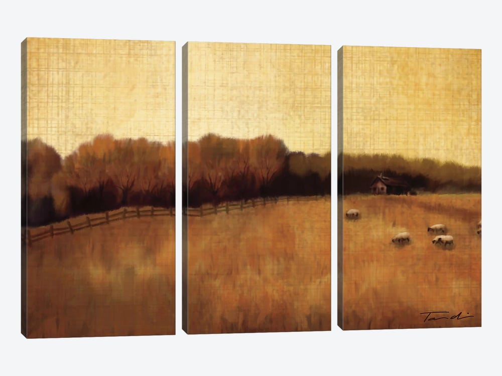 Open Range II by Tandi Venter 3-piece Canvas Wall Art