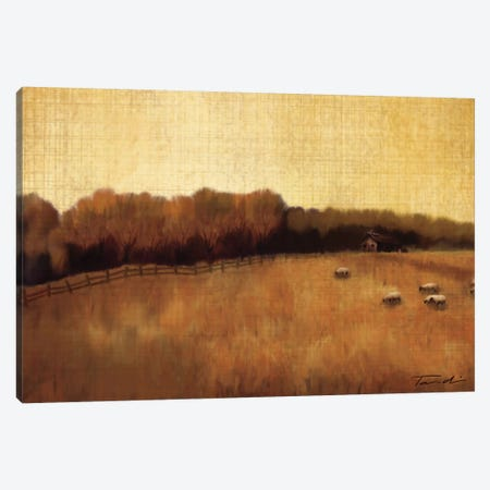 Open Range II Canvas Print #TAN138} by Tandi Venter Canvas Print