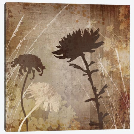 Algarve Silhouettes II Canvas Print #TAN13} by Tandi Venter Art Print