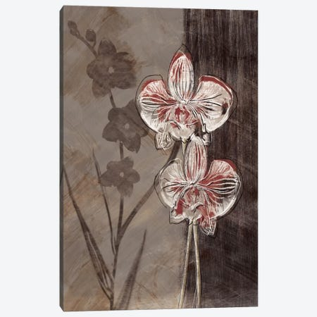 Orchid Sketch I Canvas Print #TAN140} by Tandi Venter Canvas Artwork